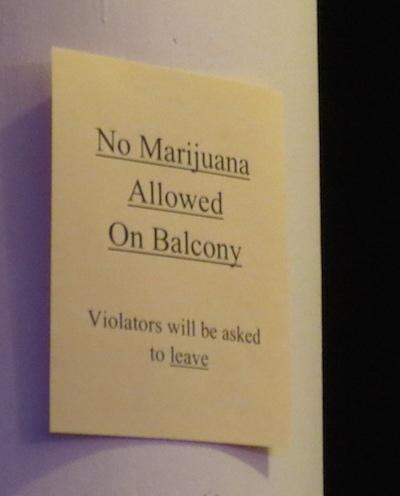 Music Festival Rules