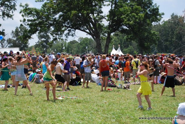 Bonnaroo Survival Guide