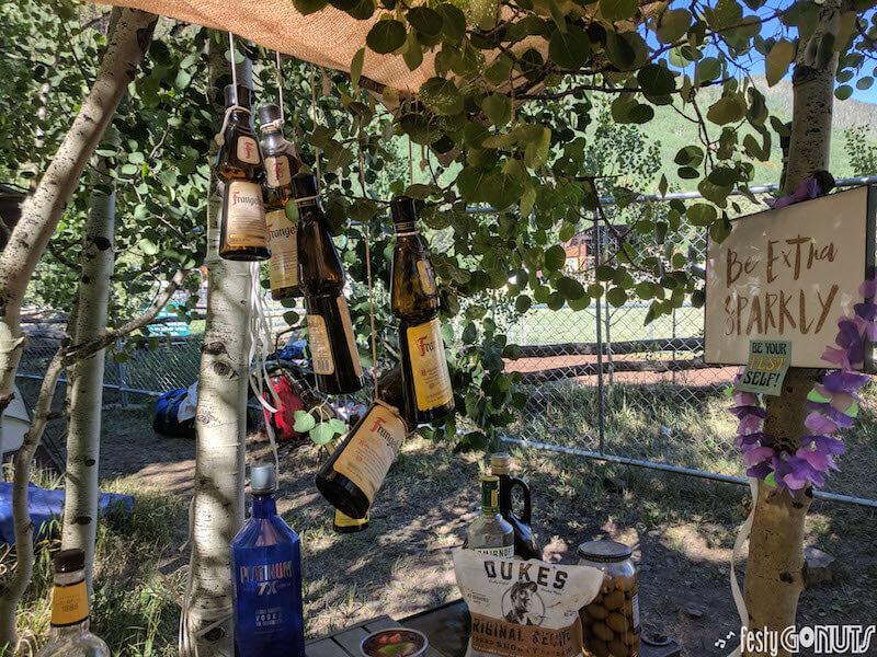 Telluride Bluegrass Festival 2018