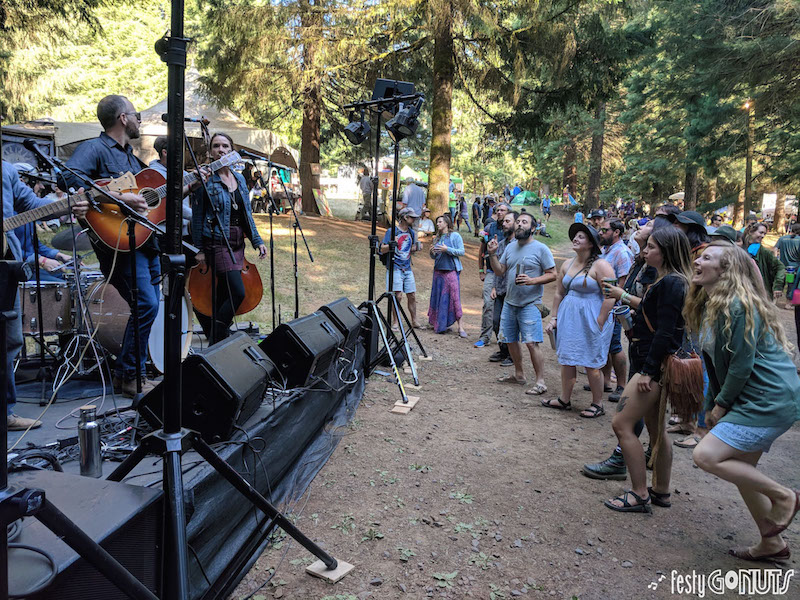 Driftwood - Northwest String Summit