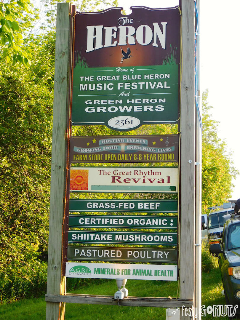 Great Blue Heron Music Festival