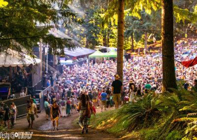 Northwest-String-Summit-2019-crowd-in-bowl