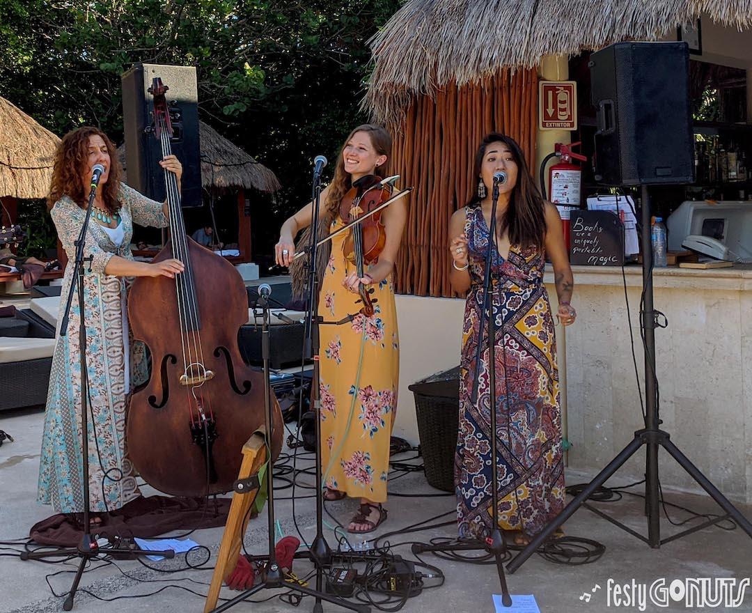 The Sweet Lillies | Strings & Sol 2019